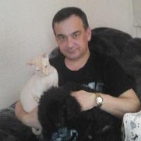 алексей, 51 год, Лев, Ульяновск