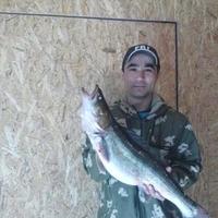 Тимур, 34 года, Скорпион, Томск