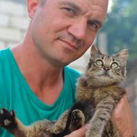 Дмитрий, 45 лет, Весы, Севастополь